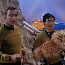Kirk & Sulu.jpg