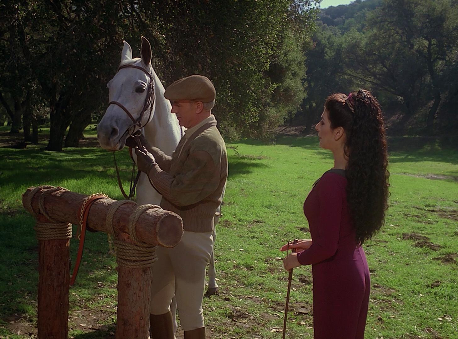 Equestrian Adventure