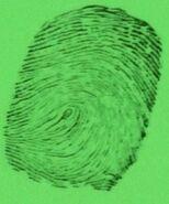Fingerprint of Carter Winton