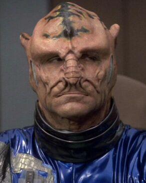 Assan, an Imhotep male