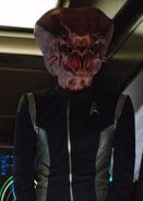 Osnullus bridge officer
