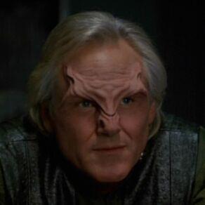 Mabus, a Trabe male (2372)