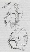 Tailhead alien, concept art