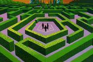 Rec Room - The Maze