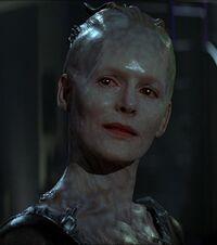 Reine Borg
