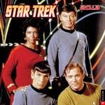 Star Trek Calendar 2013 cover.jpg