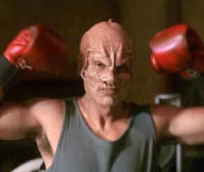 A holographic Terrellian boxer