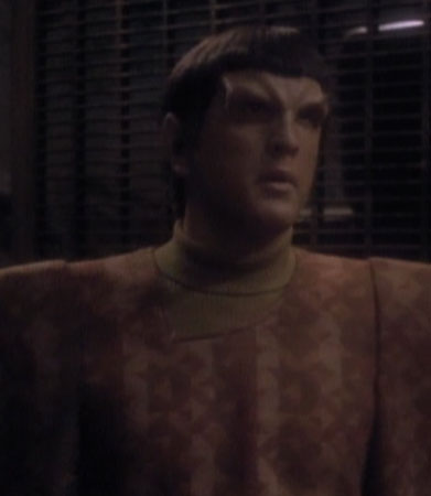 Unnamed Romulans (24th century)