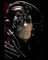 Borg2.jpg