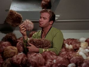 Kirk surrounded by Tribbles.jpg