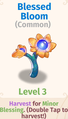 Blessed Bloom