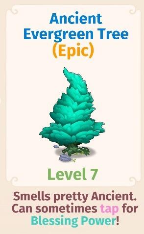 Ancient Evergreen Tree