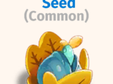 Fruit Bush Seed