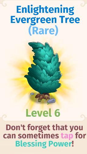 Enlightening Evergreen Tree