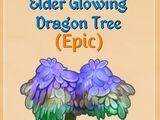 Elder Glowing Dragon Tree