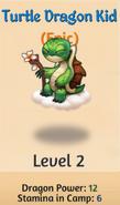Turtle dragon kid