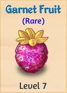 07 Garnet Fruit