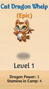 2 - Cat Dragon Whelp