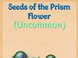 Prism Flowers