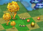 The First Nine Stages Of Golden Tree Among The Corresponding Seeds-Golden Apple And A Golden Duck Egg