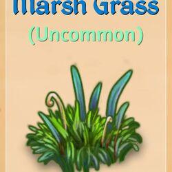 MarshGrass.jpg
