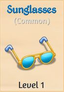 01 Sunglasses
