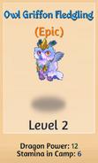 Owl-level-2