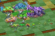 All-dragon-trees