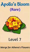 07 apollo's bloom