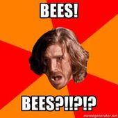 Gwaine and bees meme