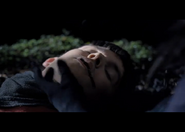 Merlin sick