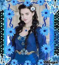Morgana-flowers