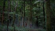 Forest of Ascetir 7