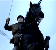 10 horse