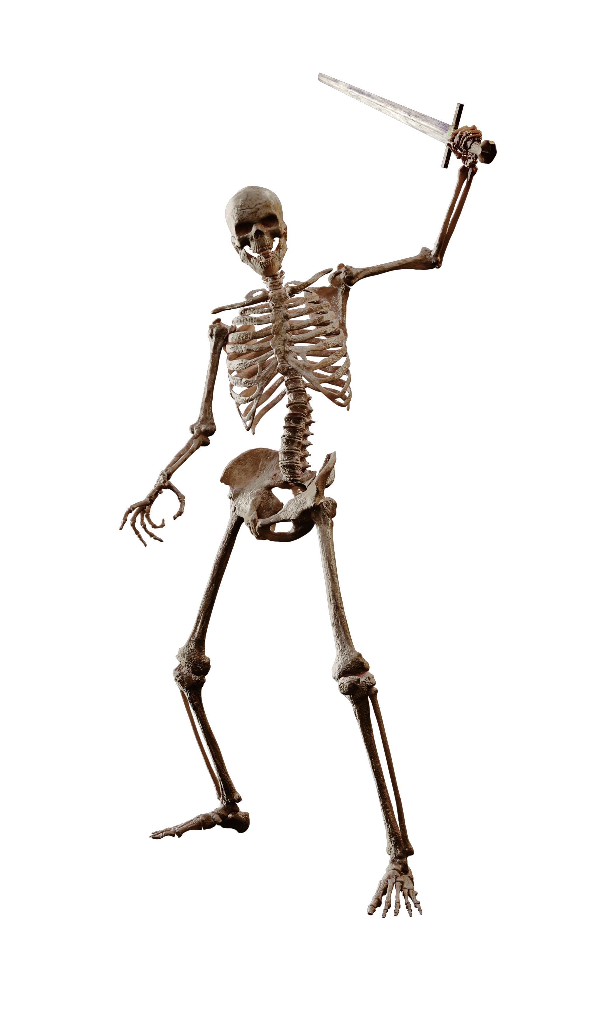 Undead Skeletons