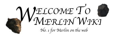 Welcome to Merlin Wiki.png