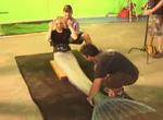 Aquamarine Stunt Double