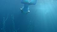 Siren Swimming