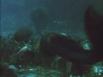 Miranda Swimming Underwater