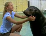 June Talking to Seal