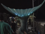 Aquamarine Mechanical Tail