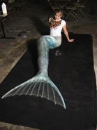 Aquamarine Tail Fitting