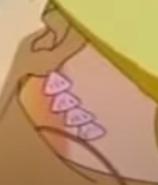 Princess lucias 4x shell earrings1