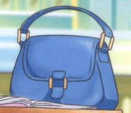 Hanons bag from DVD cover1