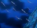 South Atlantic Ocean Mermaids