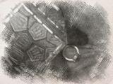 Dwarven Ring of Druin's Tribe