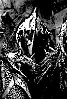 Daul (Goblin)