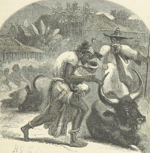 Inlander's Gold Settlers