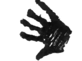 Those with the Black Hand