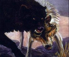 Wolf-hounds